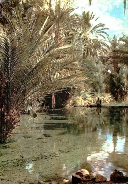 Quelle der heiligen Fische bei Tinghir, Marokko Vorderseite