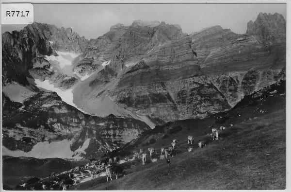 Mürtschenstock von Alp Bärenboden Kühen vaches cows
