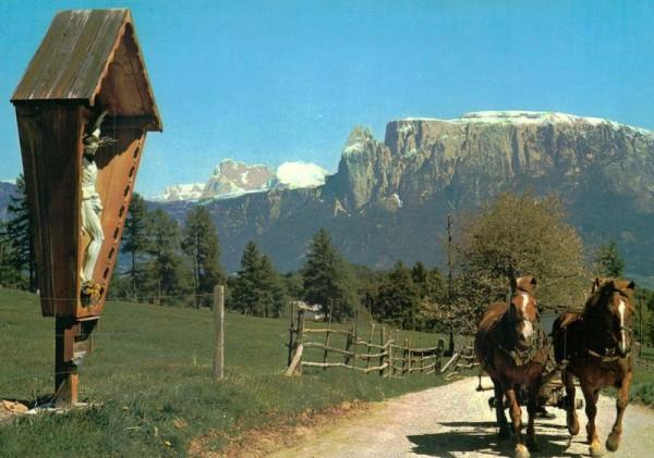 Die Dolomiten vom Ritten gesehen Vorderseite