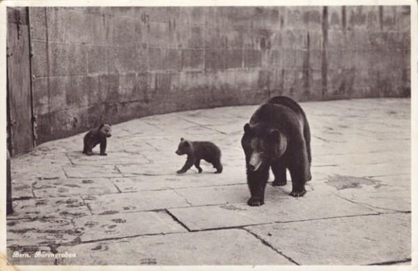 Bern - Bärengraben
