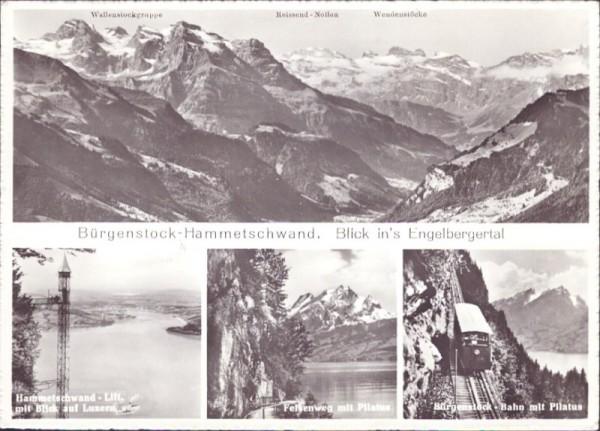 Bürgerstock-Hammetschwand, Blick in's Engelbergertal