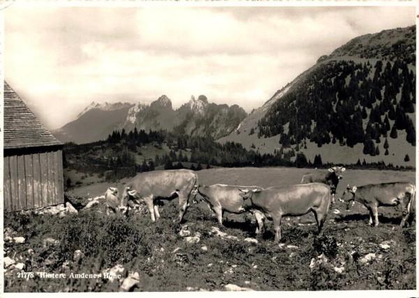 Hintere Amdener Höhe. 1945 Vorderseite