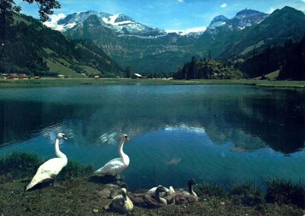 Lenk, Berner Oberland, Seeli mit Wildstrubel Vorderseite