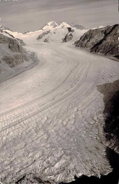 Eggishorn: Mönch - Trugberg - Eiger,  Gr. Aletschgletscher Vorderseite