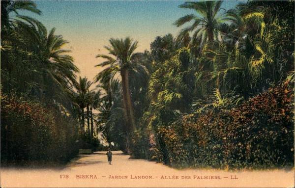 Biskra, Jardin Landon, Allée des Palmiers Vorderseite