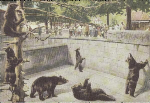 Bern Bärengraben