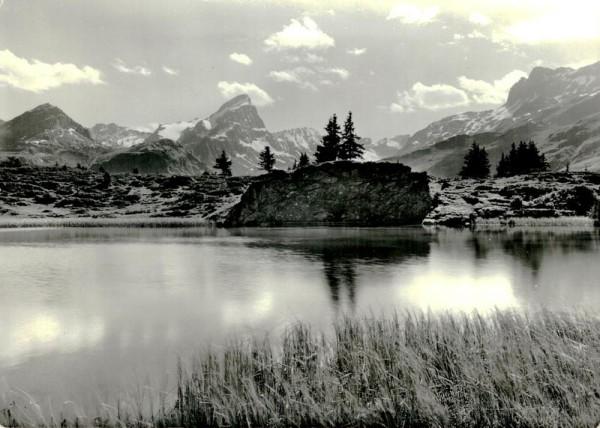 Bergseeli auf Alp Flix mit Piz Platta Vorderseite