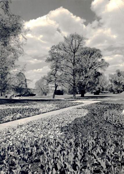 Zürich, Gartenbau-Ausstellung 1959 Vorderseite