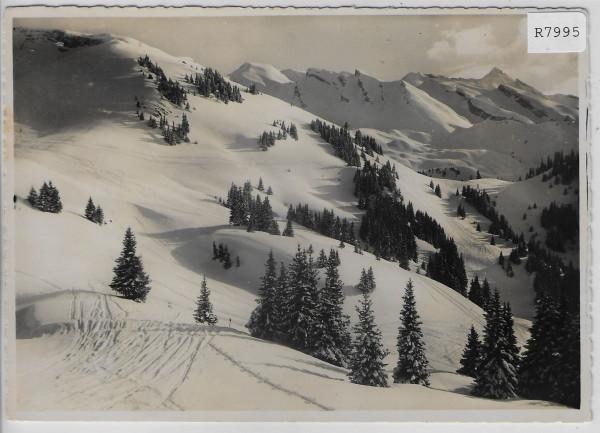 Skigebiet auf Klewenalp