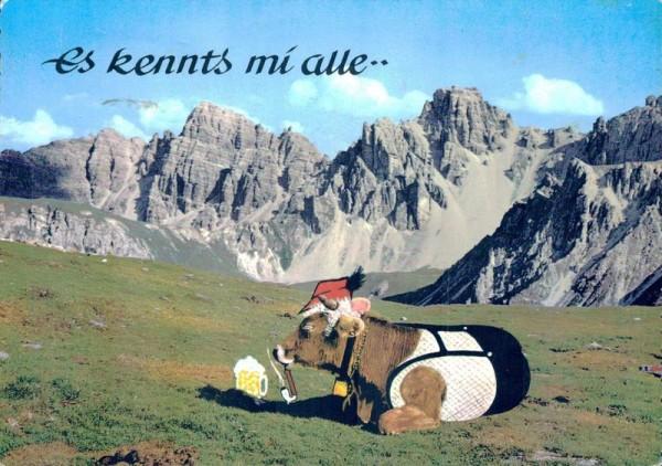 Kuh auf der Alm mit Berge Vorderseite